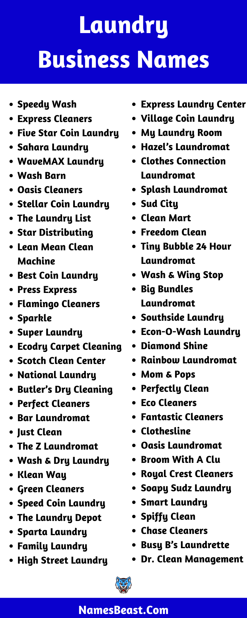 Laundry Business Name Ideas