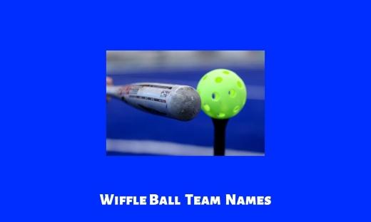 Wiffle Ball Team Names
