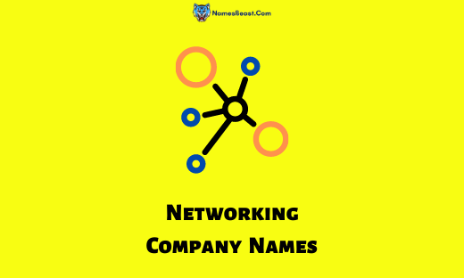 Networking Company Names